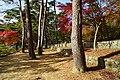 171125 Futatabi Park Kobe Japan07s3.jpg
