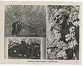 1938. Лена Сибирева отдыхает со своими товарищами.jpg