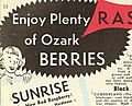 1954 catalog of hardy Ozark Mountain grown nursery stock at amazingly low prices direct from grower to planter (1954) (16669628742).jpg