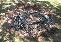 2003-09-20 Biedenkopf Brott schwitzende Kartoffeln.jpg