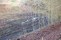 20061225-schleusentreppe-niederfinow-097.JPG