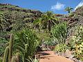 20100222-0306 Gran Canaria (1114).jpg