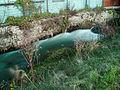 2012-11-13 14-48-14-cours-eau-Fesches-le-Chatel.jpg