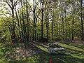 2013-05-06 17 38 56 Picnic area next to the Nature Center at YMCA Camp Bernie.jpg