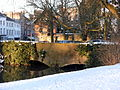 20130313 Jeker in Maastricht stadspark 3.JPG