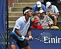 2013 US Open (Tennis) - Qualifying Round - Somdev Devarrman (9715852918).jpg