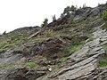 20150610 10 Passo di Gavia (18583244129).jpg