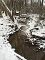 2016-02-15 08 39 55 View west down a snowy Cain Branch of Cub Run in the Armfield Farm section of Chantilly, Fairfax County, Virginia.jpg
