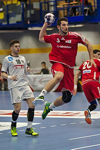 20170114 Handball AUT SUI DSC 9684.jpg