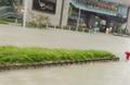 20180916 Mangkhut TKO Flooding.png