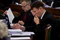 29.novembra Saeimas sēde (8229643040).jpg