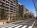 2 Chome Shibasaki, Chōfu-shi, Tōkyō-to 182-0014, Japan - panoramio (4).jpg