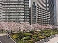 2 Chome Tsukuda, Chūō-ku, Tōkyō-to 104-0051, Japan - panoramio.jpg