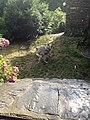 30170 Fressac, France - panoramio.jpg