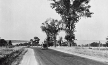 """A black and white photo of a highway curving gently to the left. A lake occupies most of the background, while several large trees dominate the foreground."""
