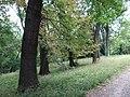 615954 pow krakowski gm Liszki Piekary park 03.JPG