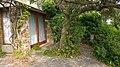 83230 Bormes-les-Mimosas, France - panoramio (25).jpg