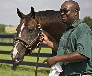 A.P. Indy American Thoroughbred racehorse