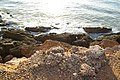 ALCOCEBRE COSTA 3 PLAYAS VISTA - panoramio - Concepcion AMAT ORTA… (1).jpg