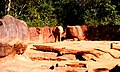 ATL Zoo - panoramio.jpg