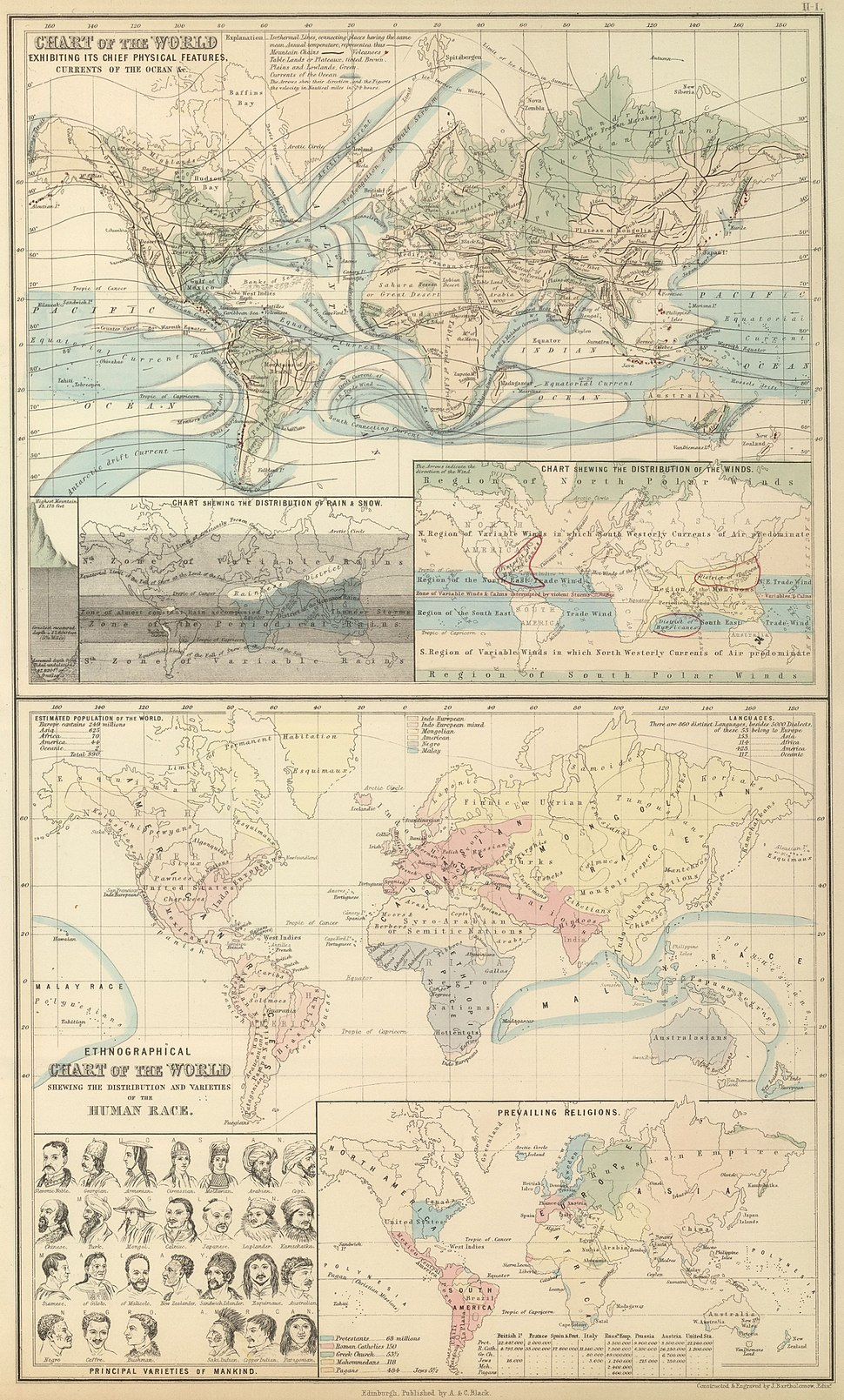 A & C Black 1854 Chart of the World