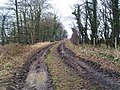 A muddy Watchley Lane on New Year's eve 2007 heading back towards Hooton Pagnell - geograph.org.uk - 644875.jpg