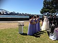 A pair of white doves in a display cage at a wedding ceremony at the Royal Botanic Gardens, Sydney, Australia.jpg