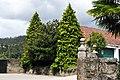 Abetos - panoramio.jpg