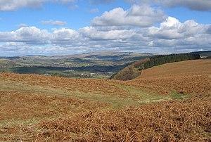 Above Ffynnonau - geograph.org.uk - 12481