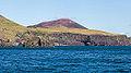 Acantilados de Heimaey, Islas Vestman, Suðurland, Islandia, 2014-08-17, DD 058.JPG