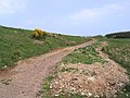 Access track - geograph.org.uk - 418066.jpg