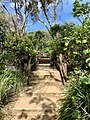 Access track to Fingal Head Light and Fingal Head, New South Wales 01.jpg