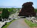 Across Knockbreda Cemetery, Belfast - geograph.org.uk - 1119535.jpg