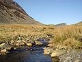Afon Teigl - geograph.org.uk - 468992.jpg
