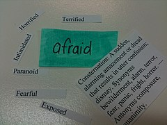 Afraid Words