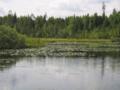 Akste järv 2009. a.png