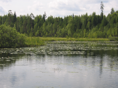 How to get to Akste Järv with public transit - About the place