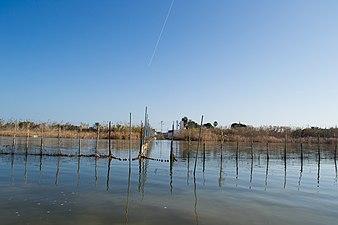 Albufera de València 06.jpg