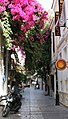 Alleyway outside the Playhouse - Heraklion, Crete (2616601434).jpg