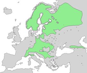 Alnus incana - Image: Alnus incana ssp incana range map 1