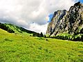 Alpages du vallon d'Ubine.JPG