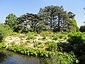 Alpine Garden - Jardin Botanique de Lyon - DSC05312.jpg