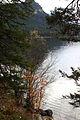 Altausseer See ost 78995 2014-11-15.JPG