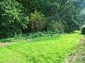 Amselweg, Pirna 125102542.jpg