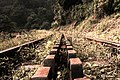An old Rack & Pinion Railway Track leading up the hill (48907219191).jpg