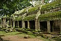 Angkor Ta Prohm Sept2009.jpg