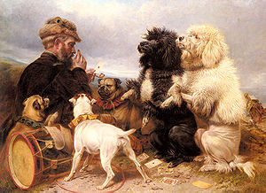 Ansdell Richard The Lucky Dogs.jpg