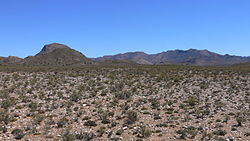 Typical Karoo vegetation to the south of Matjiesfontein, with the Anysberg Mountains visible in the background