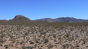 Karoo - Typical Karoo vegetation to the south of Matjiesfontein, with the Anysberg Mountains visible in the background
