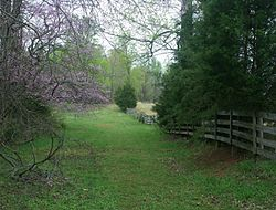 Appomattox, old Lynchberg road.jpg